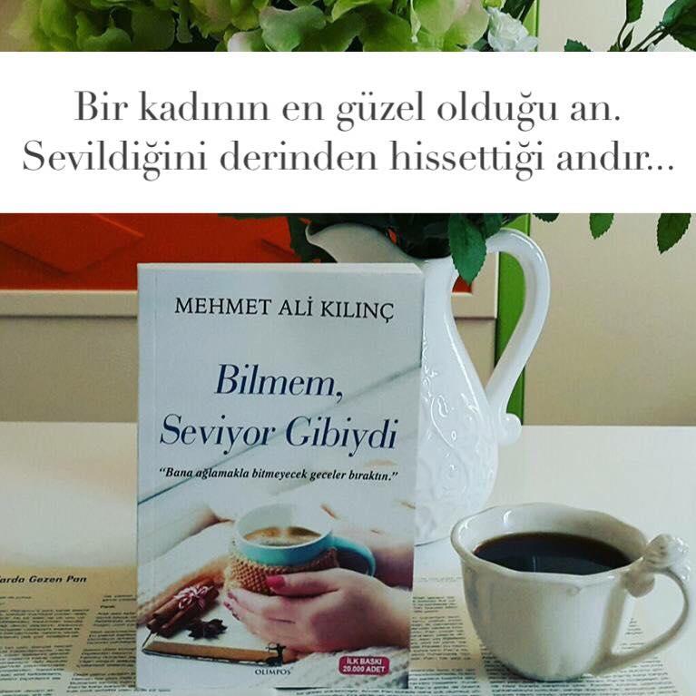 Bilmem Seviyor Gibiydi (Sevgi), Mehmet Ali Kılınç