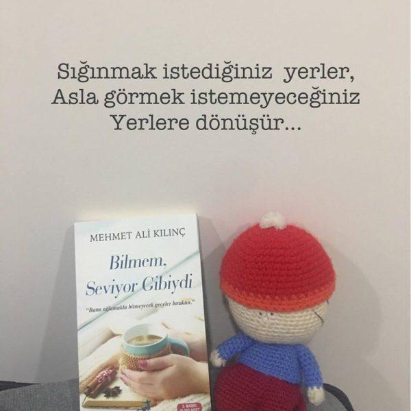 Bilmem Seviyor Gibiydi (Sığınmak), Mehmet Ali Kılınç
